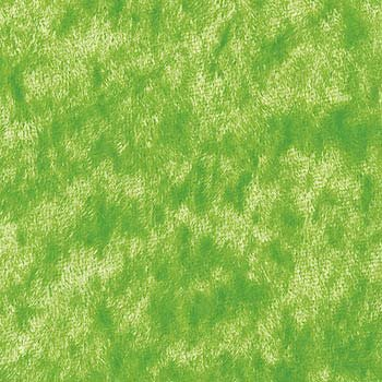 Lime Green Tongue Fabric